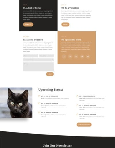 animal-shelter-get-involved-page-533x992