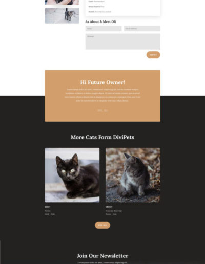 animal-shelter-listing-page-533x972