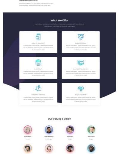 app-developer-about-page-533x1800