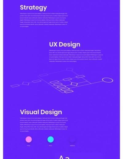 app-developer-project-page-533x2011