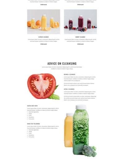 juice-shop-cleanses-page-533x1642
