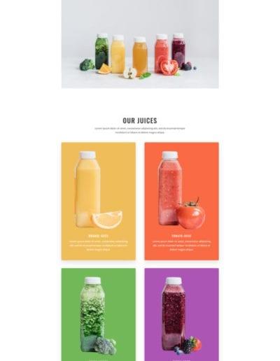 juice-shop-home-page-533x1739