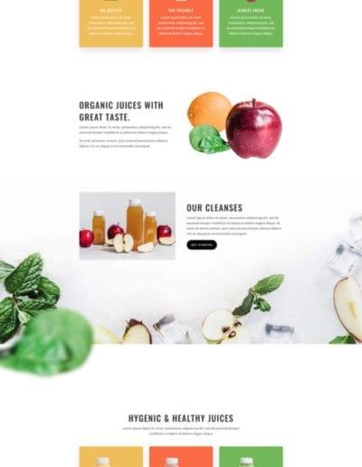 juice-shop-landing-page-533x2569